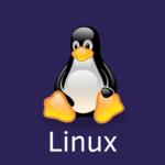 Linux テキスト内の文字列の数をカウントするコマンド