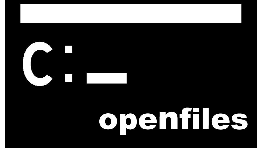windows ファイルの使用者をコマンドで確認